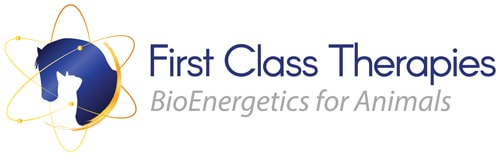 First-Class-Therapies_log